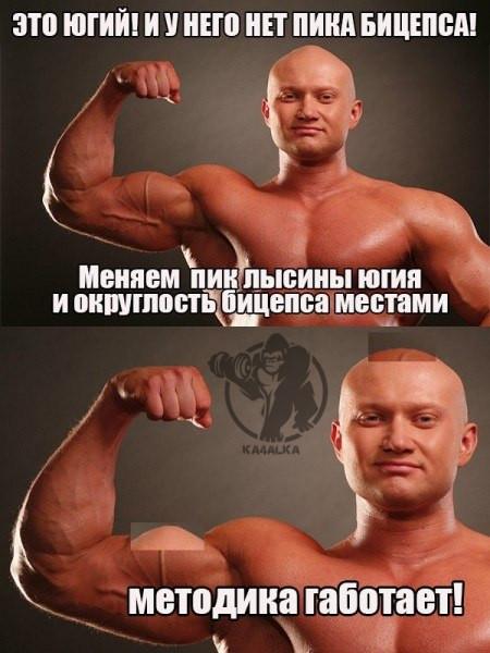 Пик лысины Спасокукоцкого