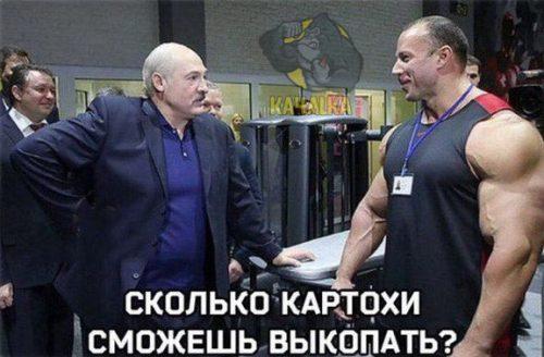 Лукашенко и Шабуня