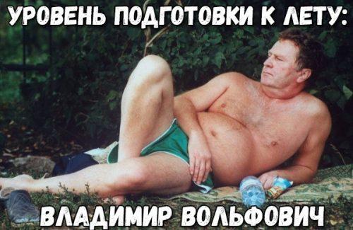 Уровень подготовки к лету: Владимир Вольфович